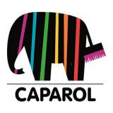 Logo Caparol