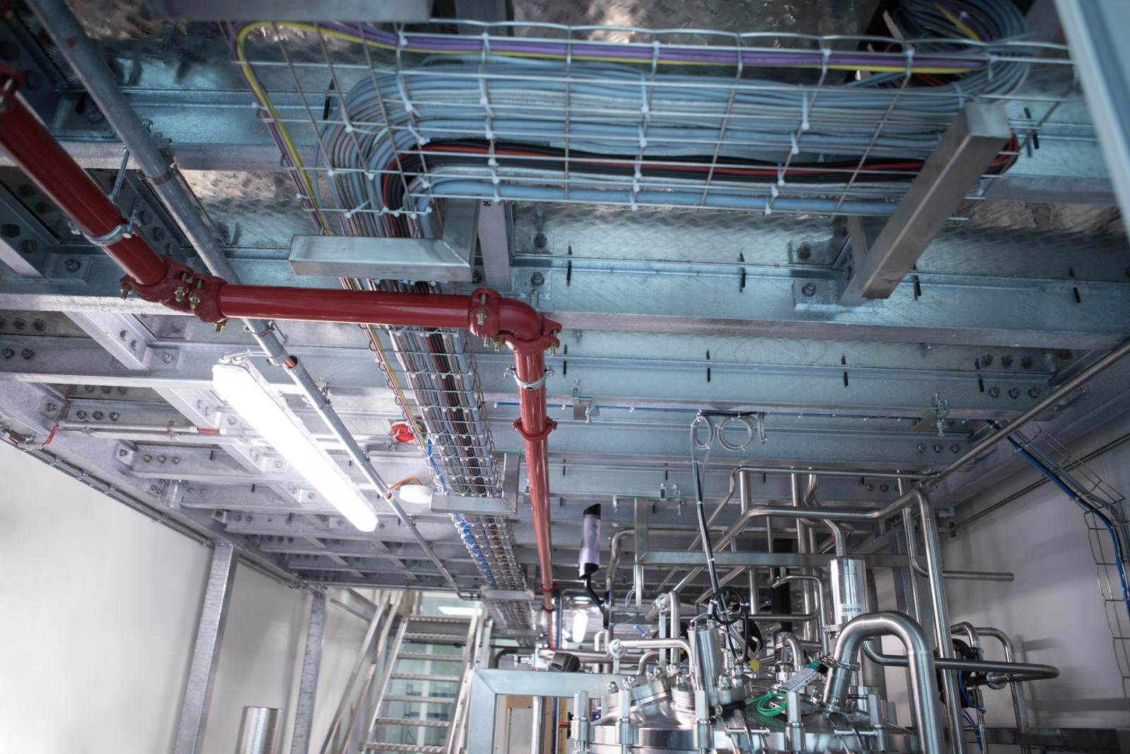 Photo of plant piping